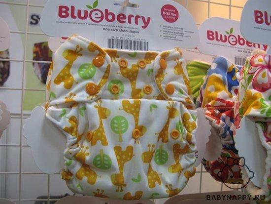 foto-trusiki-podguzniki-blueberry